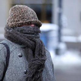 Los Mayores y el Frío