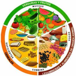 Parkinson: Alimentación para el Enfermo de Parkinson