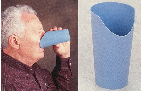 vaso-nosey-ayudas-dinámicas-asister1