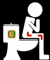 Elegir Un Elevador de WC: Elevador colocado sobre el retrete proporciona una mayor altura y permite más intimidad en esta actividad tan personal.