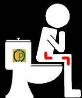 Elegir Un Elevador de WC
