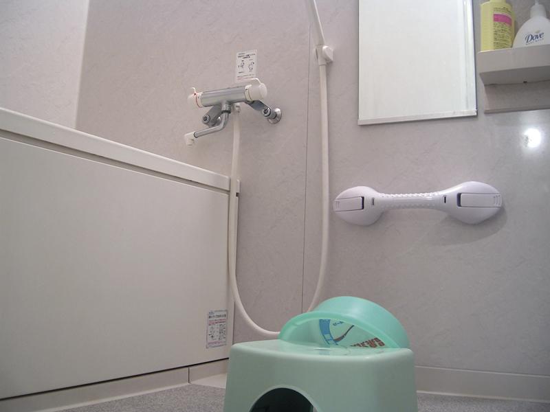 Baño Familiar Medidas:Asidera de Baño por Succión con Testigo de Seguridad, Medidas, 30