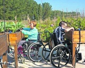 huerta para personas en sillas de ruedas