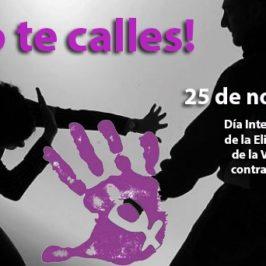 Eliminación de la Violencia Contra la Mujer: Día Internacional de la Eliminación de la Violencia Contra la Mujer, 25 de Noviembre