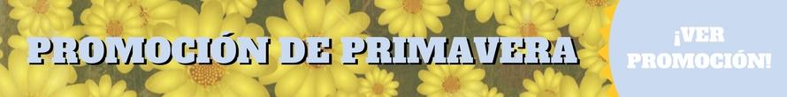 Ofertas y destacados, Promoción de primavera 2018 Asister