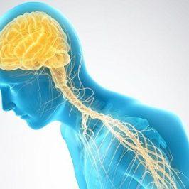 Día Mundial del Párkinson. Uno de cada 10 casos se diagnostica en menores de 45 años.