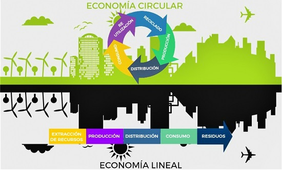 Reutilizar Productos: Economía Circular