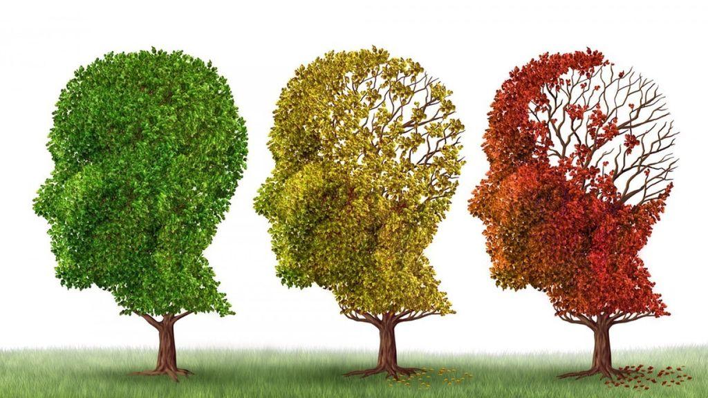 Como adaptar la vida y vivienda acorde al Alzheimer