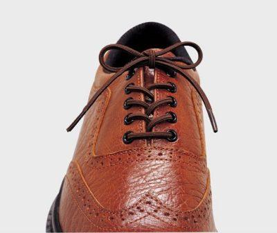 Cordones elásticos para zapatos
