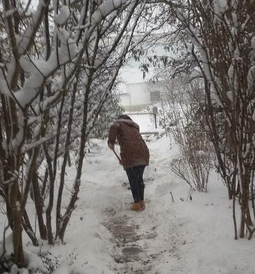 rustic snow blower Sonia