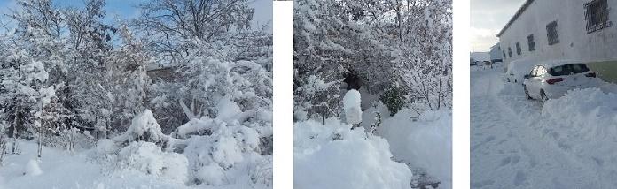Con Nieve. Asister en Cedrillas