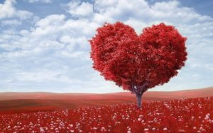 arbol salud cardiovascular